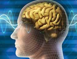 Beyin dalgaları deşifre edildi!