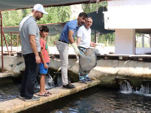 Denize Kıyısı Olmayan Midyat'ın Ala Balığına Büyük Talep Var