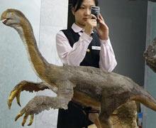 Dinozor iskeleti satıldı
