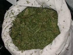 Midyat'ta uyuşturucu operasyonu!